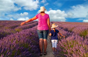 mother and Girl walking in lavender field